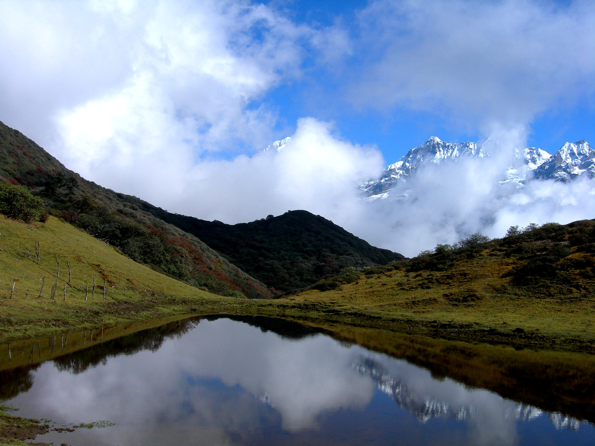 Dzongri-La trek, Sikkim, India