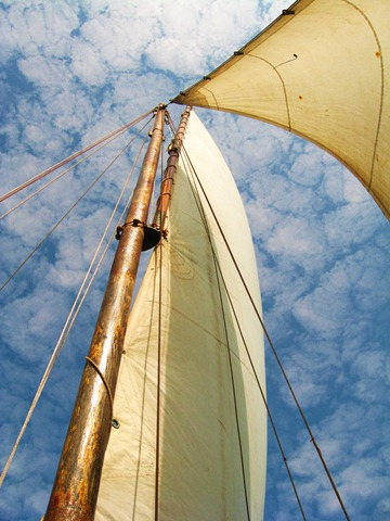 Exploring Goa: Sailing the High Seas