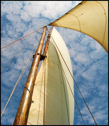 Sailing in Goa on the Arabian Sea