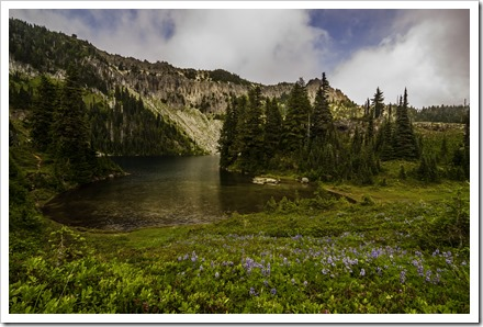 Wild flowers dotting the shore of Eunice lake. Seen at the left top is the Tolmie peak fire lookout