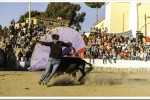 Bull fighting at the Peru-Bolivia border on the way to Copacabana