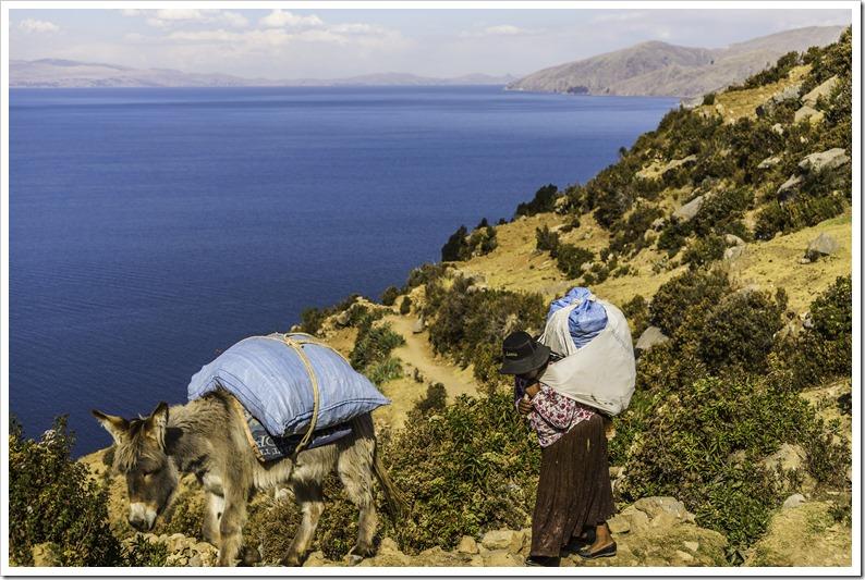 A farmer on the hills of Yumani - Isla del sol
