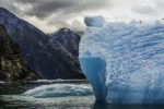 Huge icebergs dot the passage through the Tracy Arm fjord